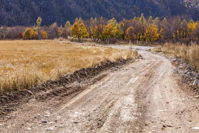 Escena rural de carretera en el campo chino - foto de stock