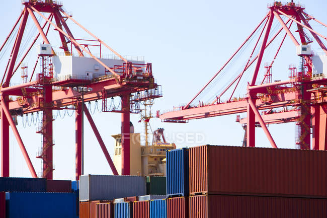 Cranes and cargo containers in shipping dock — Stock Photo
