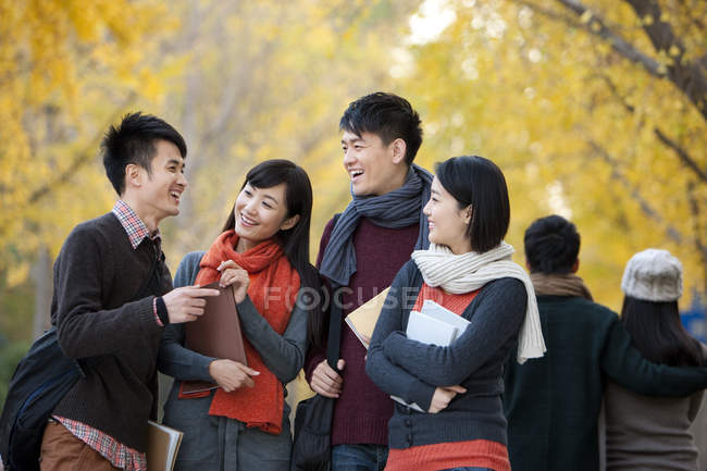 Chinese College Students With Books Talking In Campus Park Autumn Non Urban Scene Selective Focus Stock Photo 182385056