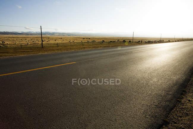 Дороги, що йде через поле в провінції Цинхай, Китай — стокове фото