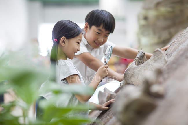 Китайські діти з допомогою збільшувальне скло в музей природної історії — стокове фото