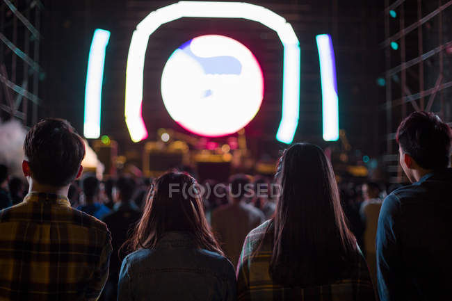 Rear view of friends at music festival — Stock Photo