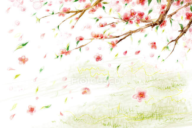 Peach flowers with falling petals over green lawn — Stock Photo