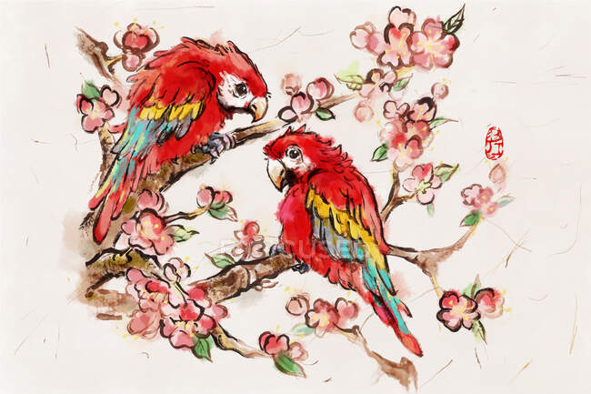 Parrots perching on blooming cherry tree branches — Stock Photo