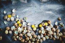 Huevos de codorniz con cáscaras - foto de stock