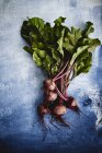 Fresh organic beetroots — Stock Photo