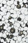 Sliced raw turnips — Stock Photo