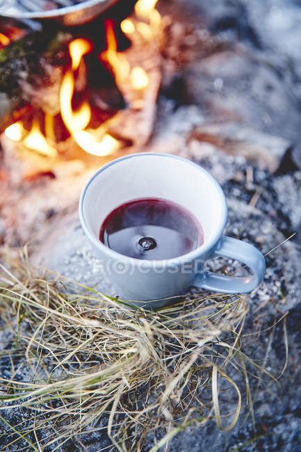 Blackcurrant hot drink — Stockfoto