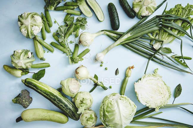 Green autumn vegetables - foto de stock