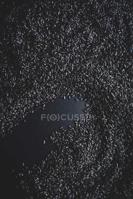 Delicious black rice — Stock Photo