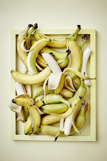Fresh ripe bananas — Stock Photo