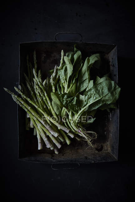 Fresh asparagus with spinach — стоковое фото