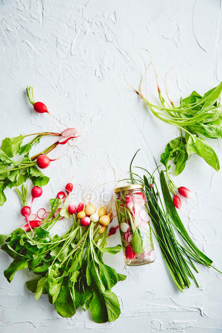 Fresh ripe radishes — Stock Photo