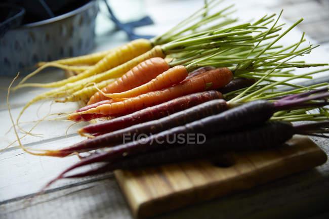 Zanahorias orgánicas coloridas - foto de stock