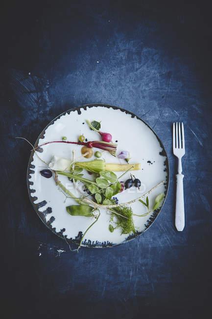 Свежий органический овощной салат — стоковое фото