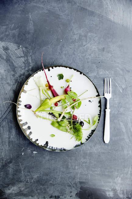 Frischer Bio-Gemüsesalat — Stockfoto