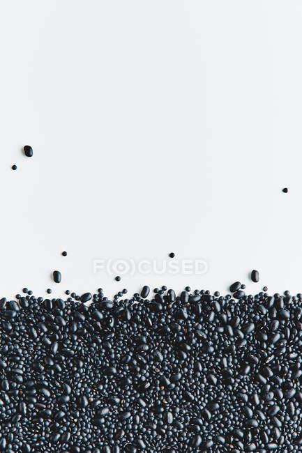 Textura de ervilhas preto — Fotografia de Stock