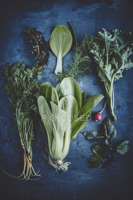 Свежие овощи и травы — стоковое фото