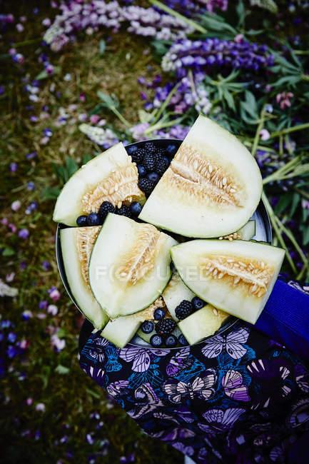 Fresas y melones en rodajas frescas - foto de stock