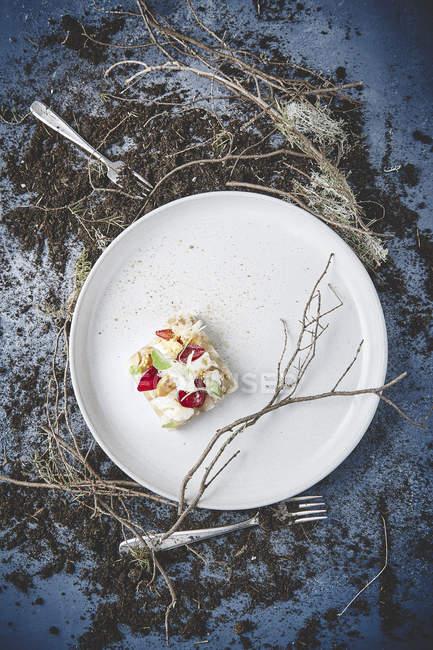 Delicioso aperitivo en plato blanco - foto de stock