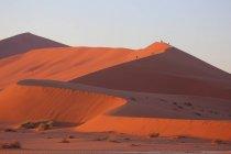 Sand Dunes - Sossusvlei — стоковое фото