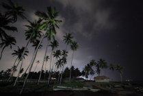Перегляд напрямку Varkala пляж і пальмових дерев. Керала. Індія на ніч — стокове фото
