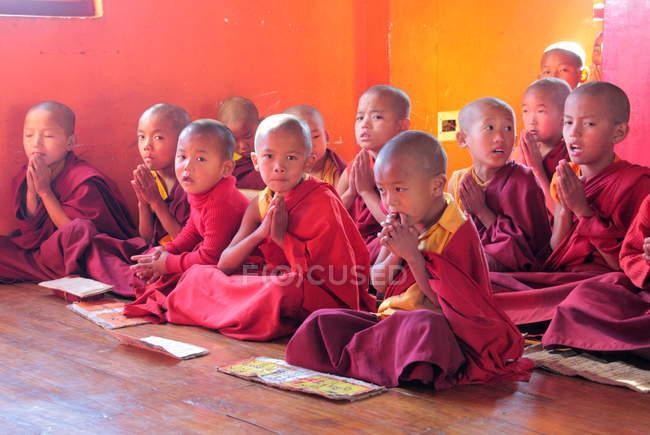 Молодые послушники смотрят в камеру — стоковое фото