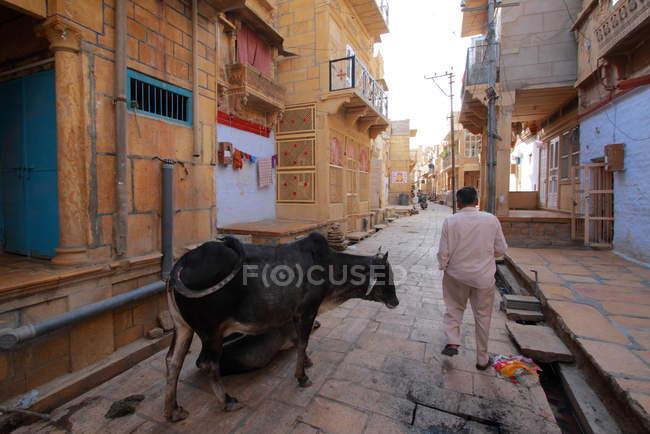 Einheimischer in Jaisalmer. Indien. rajasthanischer Staat — Stockfoto