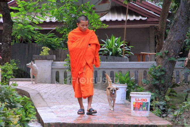 Monk near Wat Xieng Thong temple — Stock Photo
