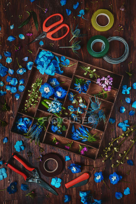 Blue flowers in wooden box — Stock Photo