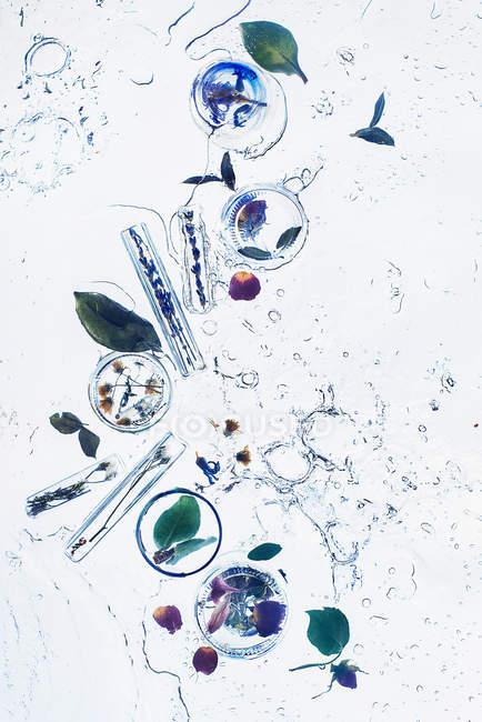 Цветы в бутылках с водой — стоковое фото