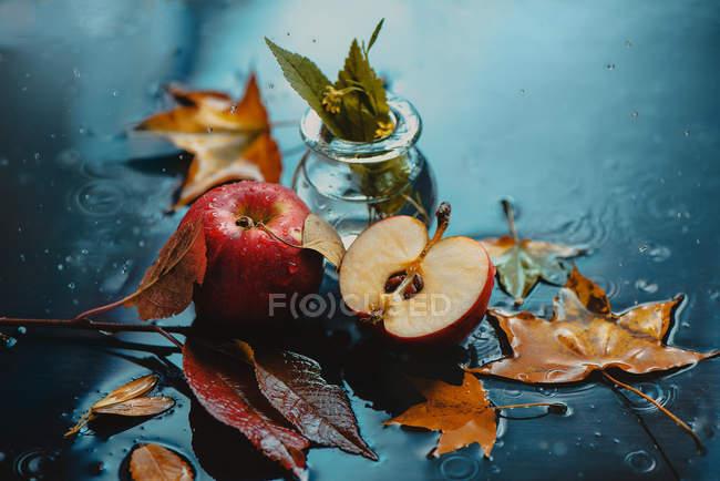 Pommes rouges avec des feuilles d'automne — Photo de stock