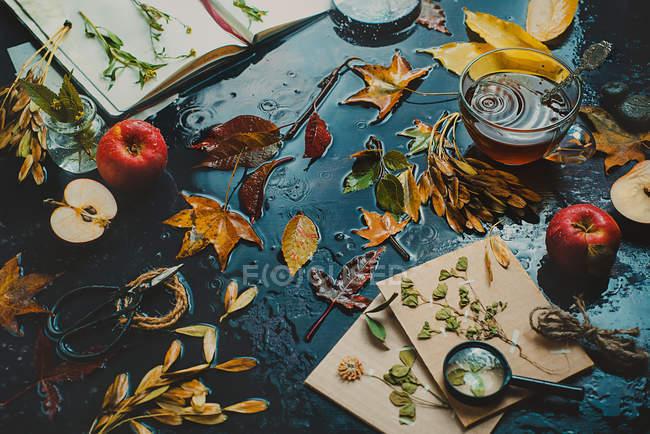 Осенний натюрморт с книгами — стоковое фото