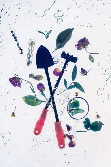 Два сада инструменты с листьями — стоковое фото