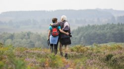 Пара попередньо заблокувати над лісисті пагорби — стокове фото