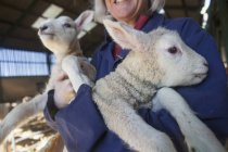 Mulher segurando dois cordeiros em seus braços — Fotografia de Stock