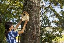 Mulher colocando uma casa de pássaro — Fotografia de Stock
