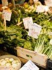 Verdura fresca al mercato di Rialto cibo — Foto stock