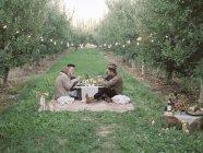 Menschen mit einem Picknick auf dem Rasen — Stockfoto