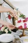 Жінка розрізання торт — стокове фото