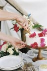Женщина, резки торт — стоковое фото