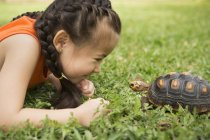 Girl looking at a tortoise — Stock Photo