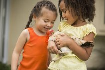 Two young girls holding a chicke — Stock Photo