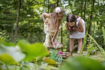 Girls playing at a pond — Stock Photo