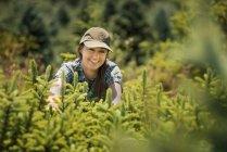 Mulher de recorte e poda de árvores jovens — Fotografia de Stock