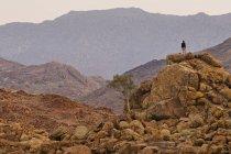 Persona in piedi su una pila di roccia — Foto stock