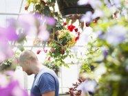 Man in a garden centre — Stock Photo