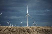 Wind turbines reaching into the distance — Stock Photo