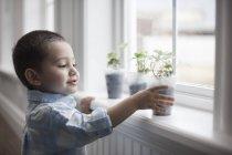 Garçon en regardant les jeunes plants — Photo de stock