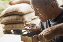 Homme examinant et humant l'arôme — Photo de stock
